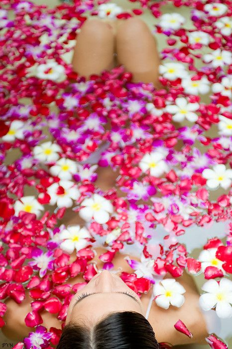 811 best images about FLoWeRs MaKe Me HaPpY!! on Pinterest ...
