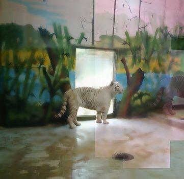 juan kasari contemporary art photography