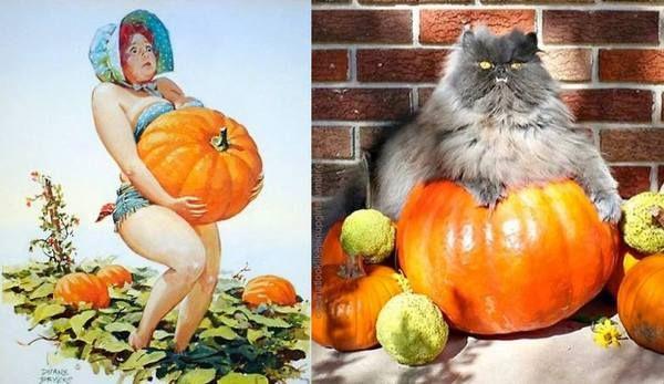 Кошки как девушки с обложки (Pin Up кошки) кот, pin up, длиннопост