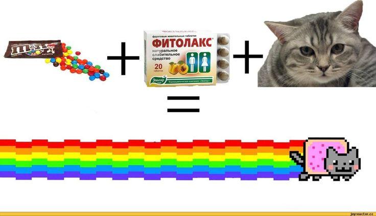 Nyan Cat Girl Minecraft Skin