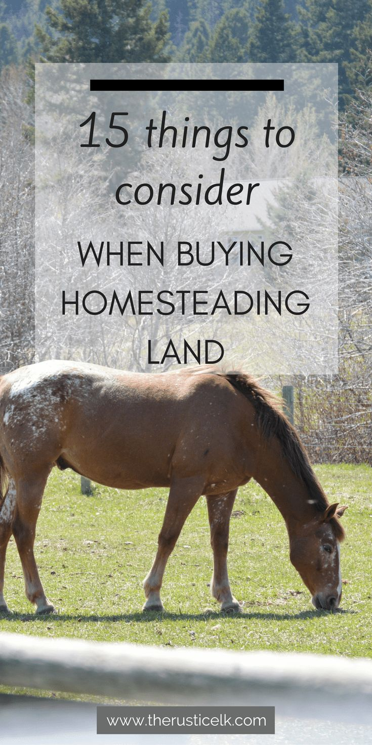 15 Things to Look for When Buying Homesteading Land - Wondering what to look for when buying homesteading land? Here are 15 questions to ask on your hunt to find the perfect fit! #homesteading