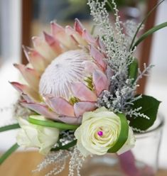 Flowers. Proteas