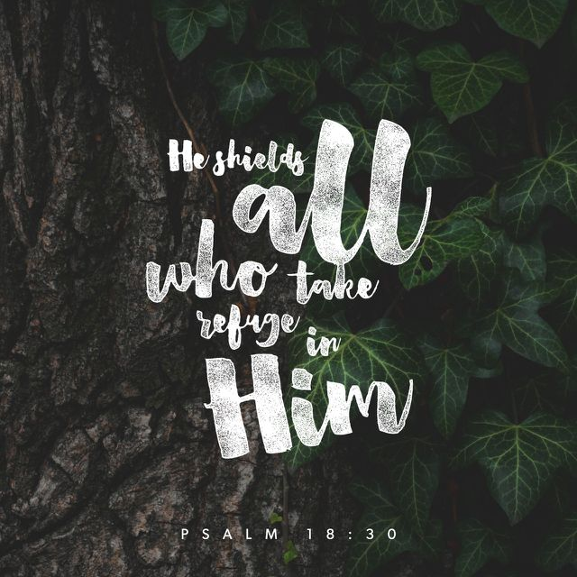 God is a shield to protect us when we are too weak to face certain trials by ourselves, but He does not want us to remain weak. He strengthens, protects, and guides us. He continues to work with us because we are weak and we need His help.
