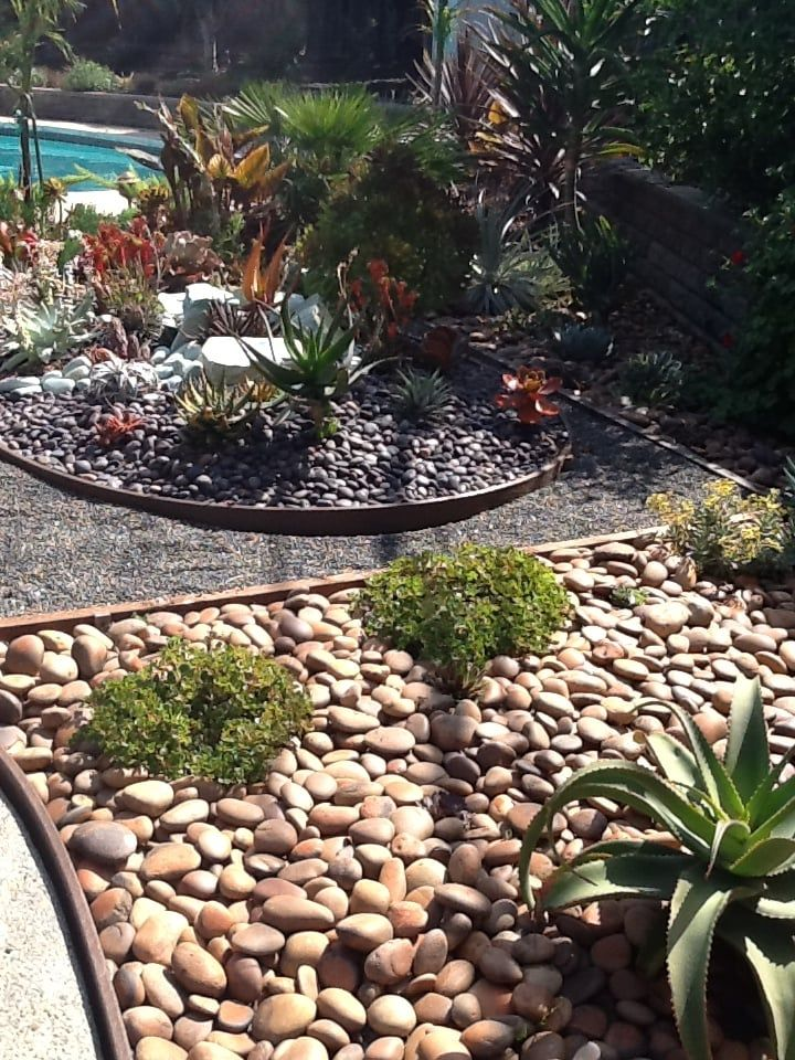 Asian Inspired Succulent Garden Yelp Succulents garden