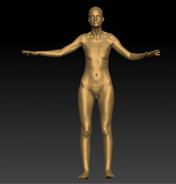 PHOTO OF WHOLE BODY WOMAN WHITE NUDE SLIM BALD WHOLE BODY 3D SCAN