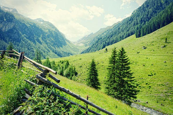 10 Gründe warum Sie das Zillertal kennen und lieben sollten - http://reisecompass.de/10-gruende-warum-sie-das-zillertal-kennen-und-lieben-sollten/