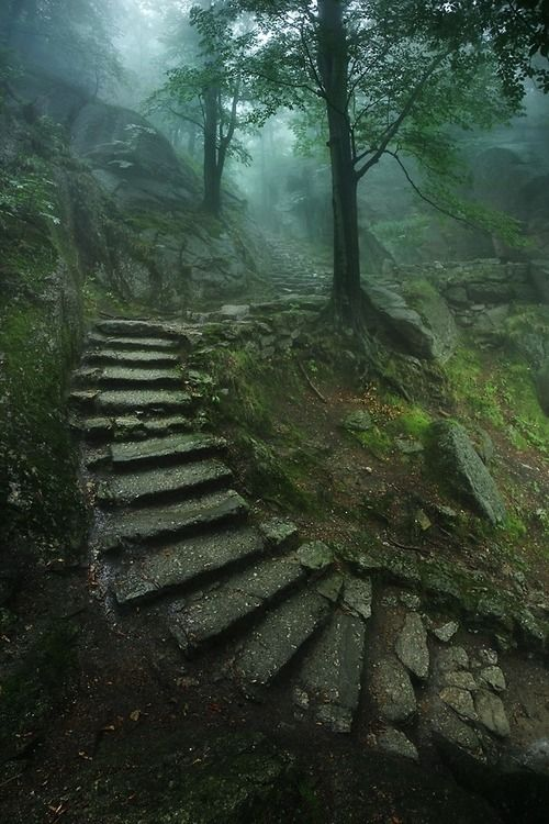 Stairway to the Castle | by Karol Nienartowicz. #nature #Photography