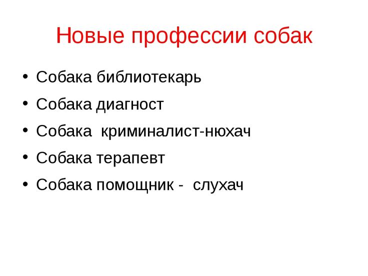 Новые профессии собак Собака библиотекарь Собака диагност Собака криминалист-...