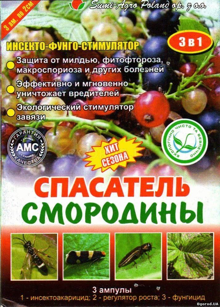 «Спасатель смородины» - инсекто-фунго-стимулятор, ТМ Sumi-Agro Poland