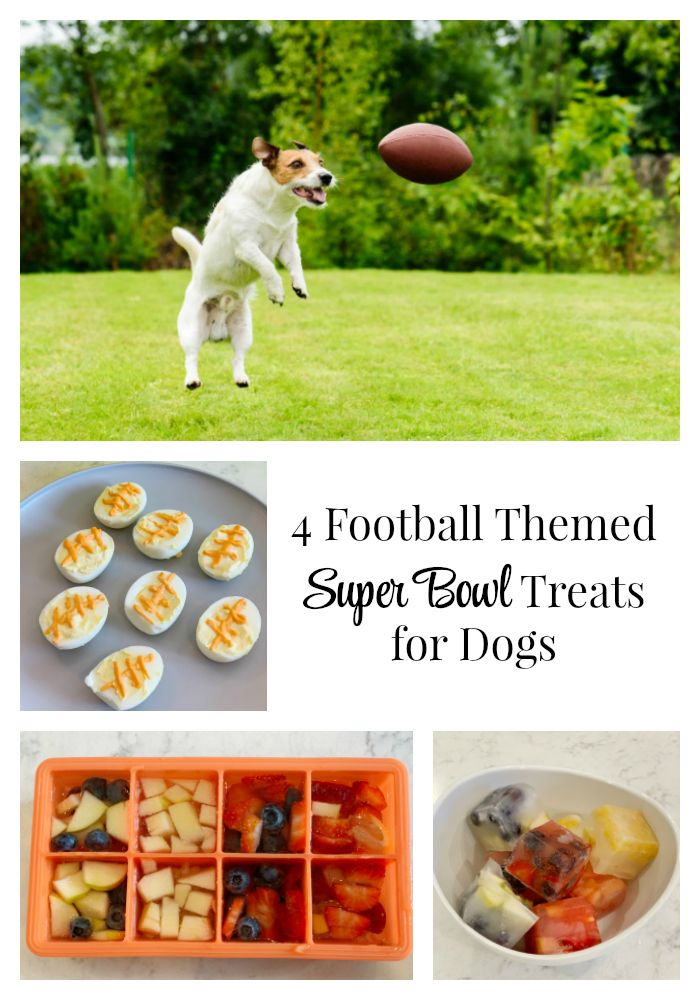 Football Themed Super Bowl Treats For Dogs Best Dog Food Brands