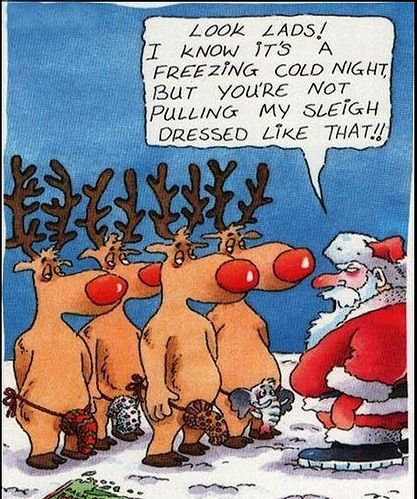 129 best Christmas quotes/humour images on Pinterest | Christmas ...