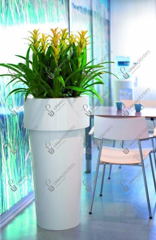 Floral Displays - Live - Urban Planters