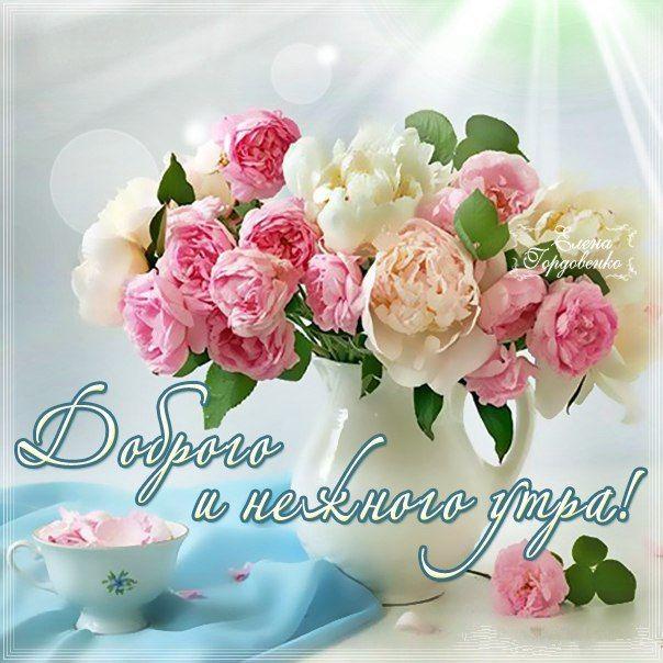 Открытка с цветами доброго утра