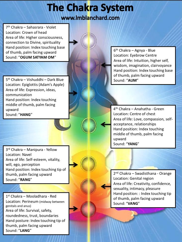 Chakra System.- ... The chakras are located along the length of the spine starting at the base of the spine, in the sacral region, and travels all the way up to the crown of the head. Each chakra holds a specific frequency which can be associated to a specific colour and sound wave. ...