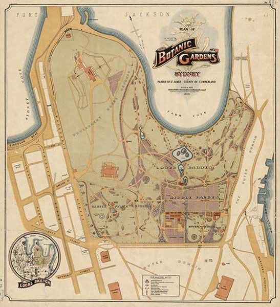 Plan of the Botanic Gardens, Sydney, 1914