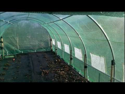 PVC greenhouse in a day DIY - YouTube