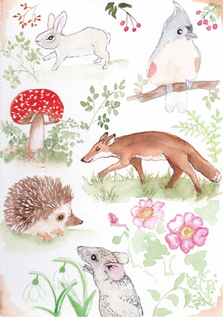 https://flic.kr/p/SDJXXY   my watercolour book,sketches for fun   A nature inspired  page of cuteness