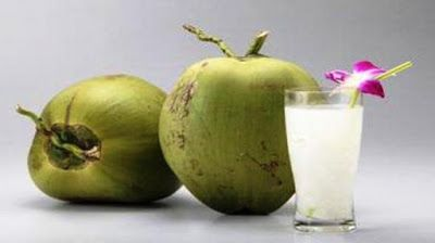 young coconut exporters: News