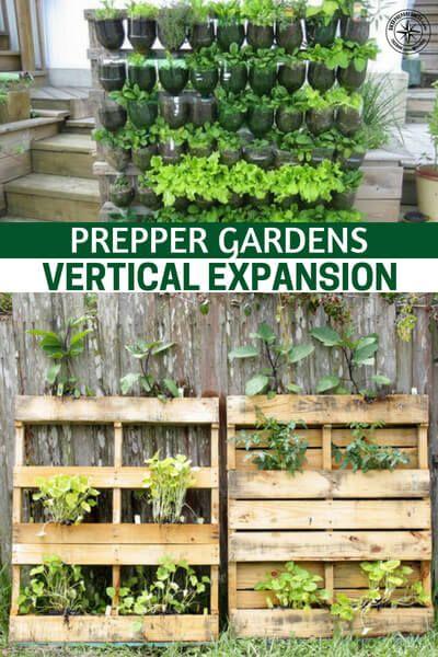 Prepper Gardens – Vertical Expansion | gardening | Pinterest | Gardens