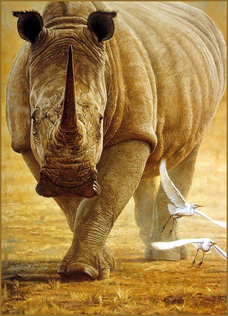 [LRS Animals In Art] John Banovich, Great White Rhinoceros