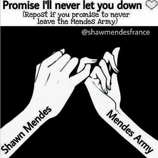 ummmm......i'm trapped in the mendes army now there's no way i can leave! i love shawn and my family (mendes army family) too much