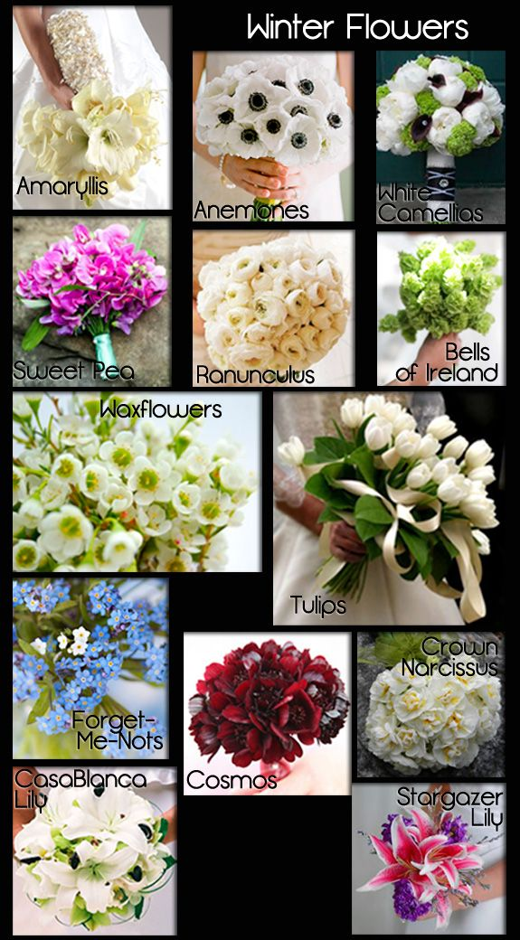 Wedding Flowers | A Seasonal Guide with Photos |Love the Ranunculus they come in alll different colors