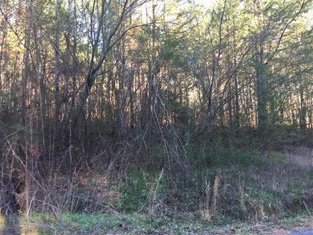 HUNTERS DREAM OR BRING YOUR HORSES GORGEOUS COUNTRY VIEW - 16 ACRES WOODED VACANT LAND WITH NO RESTRICTIONS. ROAD FRONTAGE. CREEK. PART OF BANK HEAD FOREST. MINUTES TO HWY 278.