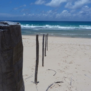 Mozambique beach taken by Ryan kuter