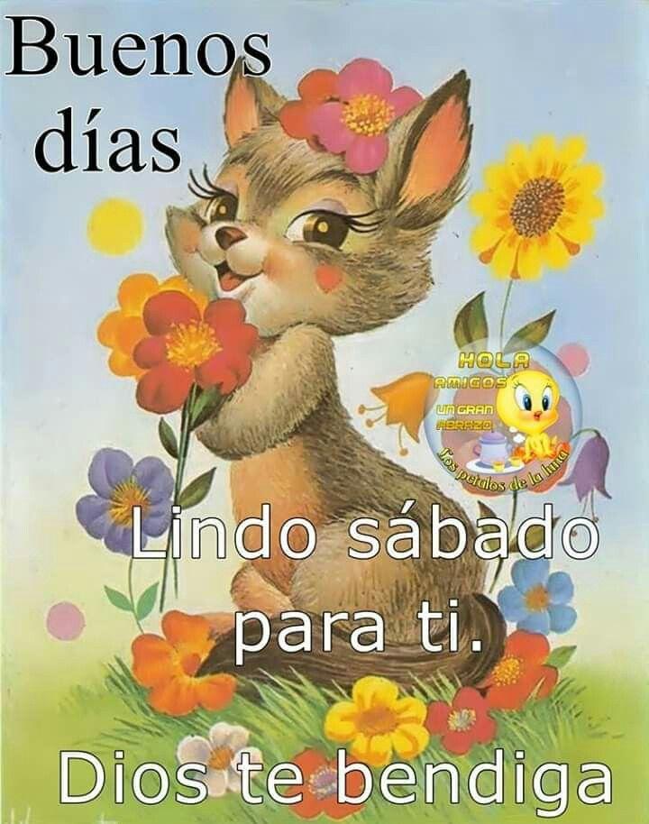 Pin De Pedro Angel Matus En Motivacion Con Imagenes Saludos D