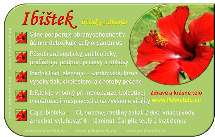 Info Ibištek