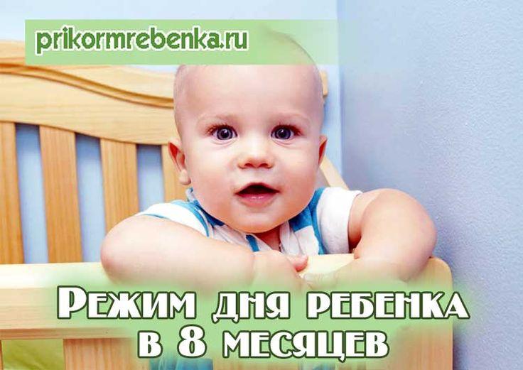 Режим дня ребенка 8 месяцев