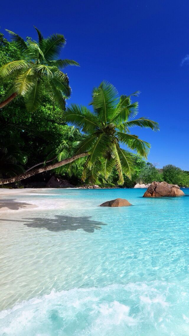 Can't you just feel that water and that silky sand between your toes. Need to plan that Hawaii trip ASAP! Travel is the #inspiration behind all out #pearl #jewelry.