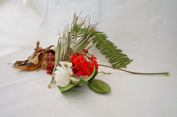 """Naturaleza casi-muerta"" por Alan Rosales Flores - Google+"