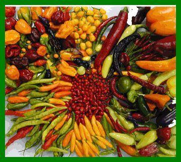 Distintas variedades de chiles