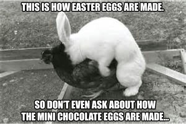 How Easter Eggs Are Made Funny Meme Funny Stuff Funny Easter Bunny Easter Eggs Funny Memes