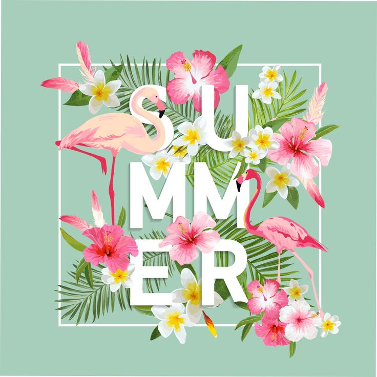 Overzicht gratis uitjes zomer 2017 - de leukste uitjes voor in de zomervakantie