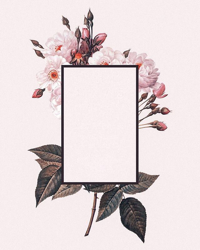 The 1975 Flower Rectangle