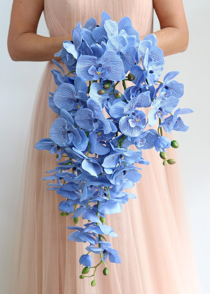 Best 25 Blue Orchids Ideas On Pinterest Blue Orchid Wedding Blue Purple Wedding And Orchids