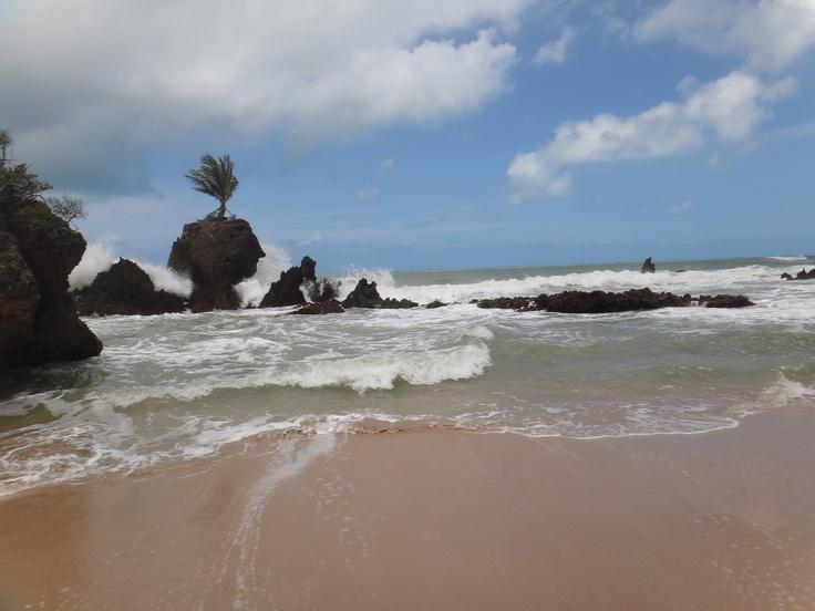 Praia de Tambaba, Litoral Sul da Paraíba