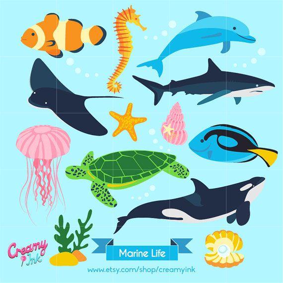 Ocean Digital Vector Clip art / Marine Life Clipart Design ...