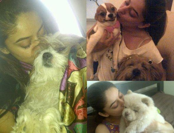 Mahi Vij with her pet dogs. Pic/Mahi Vij's Twitter account | #indipin