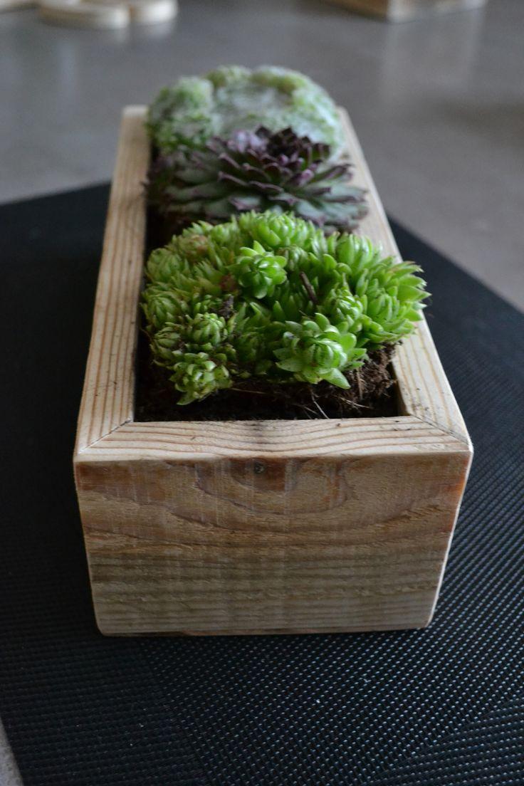 Small succulents planters / Petite décorations de table #Decoration, #Pallets, #Planter