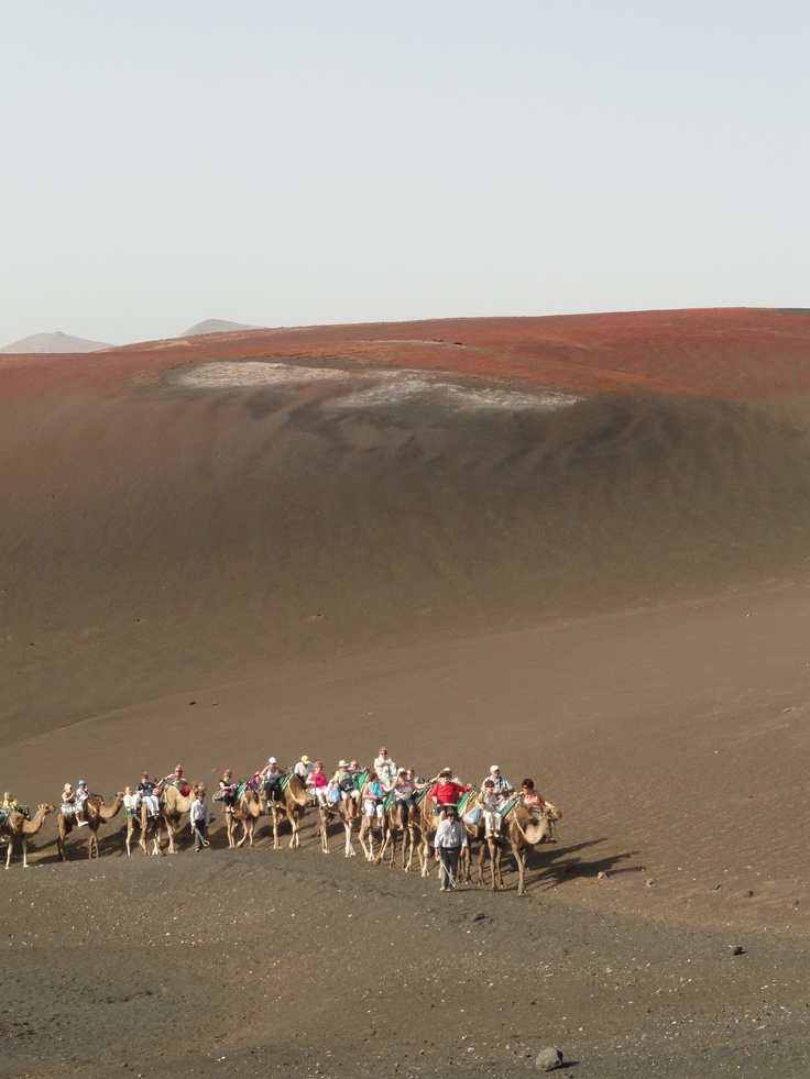 camel ride on Mount Tiede