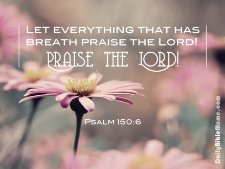 Psalms 150:6 KJV  Let every thing that hath breath praise the Lord . Praise ye the Lord .