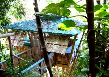 Tropical Treehouse - Puerto Rico, USA    Rent it!