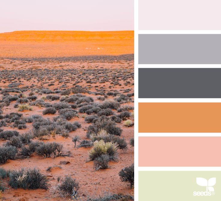 128 best images about wanderlust on pinterest for Southwest desert color palette
