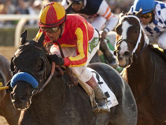 345 Best Favorite Jockey Images On Pinterest Horse