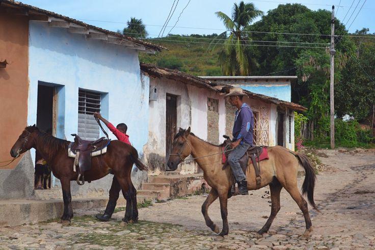 trinidad cowboys