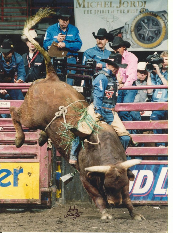 1552 Best Pbr And Rodeo Events Players Ect Images On