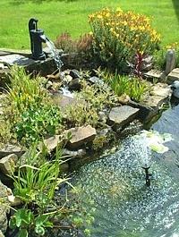 Garden Ideas Michigan 25 best garden bowl & planter ideas images on pinterest | planters